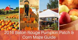 Pumpkin Patch Lafayette La by Entertainment Archives Page 2 Of 5 Baton Rouge Moms