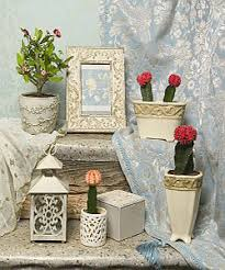 Plants In Bathroom Feng Shui by Cactus Plants And Feng Shui Decorating