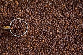Green Mountain Pumpkin Spice K Cups Caffeine by San Francisco Bay Coffee Company Official Blog
