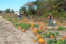 Faulkner County Pumpkin Patch by Don U0027t Miss These 15 Great Pumpkin Patches In Indiana