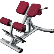 Captains Chair Workout Machine by Bench Back Raise Bench Lower Back Raise Bench Back Raise Bench