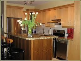 Corner Kitchen Sink Cabinet Ideas by Kitchen Kitchen Sink Splash Guard Small Kitchen Designs With