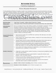 Youth Counselor Resume 26 Guidance Professional