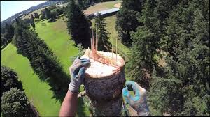 120ft Fir Tree Removal With GoPro - Tree Care Unlimited LLC - YouTube Oregons Best Hot Springs Outdoor Project Hiking Austin Maguire Austinmaguire Twitter Barnes Protection Services Inc Linkedin Criplomats Lone Star Collegecyfair Library Harris County Public Louisville Tree Service Company With The Largest Staff And Longest About Us Chip Drop Monterey Park Ca Official Website St Isidore Parish School Bloomingdale Il Glades Electric Cooperative