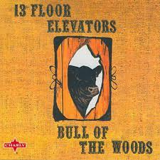 Thirteenth Floor Elevators Slip Inside This House by 13th Floor Elevators Lyrics Playlists U0026 Videos Shazam