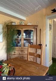 nachgestellte grünpflanze auf kiefer eckschrank im cottage