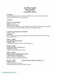 Flight Attendant Sample Resume Of Nursing Examples