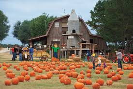 Pumpkin Patch Maryland by What Is Agritourism Farm Flavor