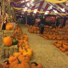 Pumpkin Patch Pasadena Area by Monrovia Pumpkin Patch Closed 12 Reviews Pumpkin Patches