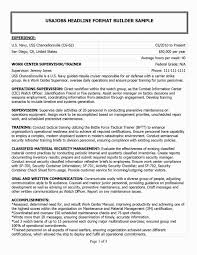 48 Awesome Sample Government Resume Example