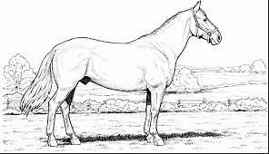 Amazing Horse Coloring Pages With Printable And Rocking