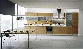Blind Corner Base Cabinet Organizer by Kitchen Kitchen Organizer Rack Kitchen Cabinet Dividers Cabinet