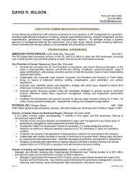 Resume Summary Statement Examples Elegant Career Example