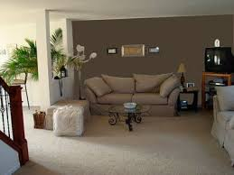 Best Colors For Living Room Accent Wall by 22 Best Living Room Images On Pinterest Accent Wall Colors At