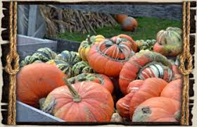 Grandville Mi Pumpkin Patches by Things To Do Families Kids Groups Individuals West Mi