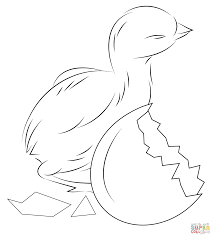 Click The Baby Chick Hatching From Egg Coloring Pages