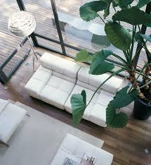 Tufty Time Sofa Nz by Tufty Time Sofa B U0026b Italia Tomassini Arredamenti
