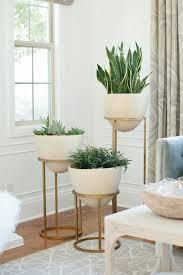 35 neu deko wohnzimmer pflanzen wohnzimmer pflanzen