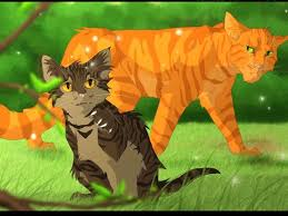 warrior cat what warrior cat are you playbuzz