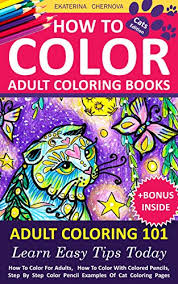 Amazon How To Color Adult Coloring Books