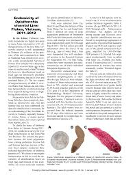 PDF Discovery Of Opisthorchis Lobatus