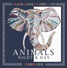 ANIMALS NIGHT DAY COLORING BOOK 9781438008974