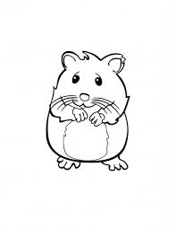Cute Hamster In Guinea Pig Coloring Page