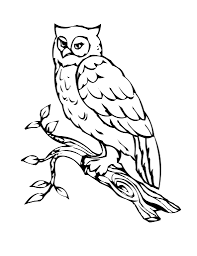 Popular Coloring Pages Owls Top Ideas