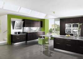 Image Of Black And White Kitchen Decor With Little Green