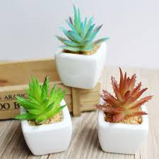 2016 new fashion white ceramics pots diy artificial aloe vera