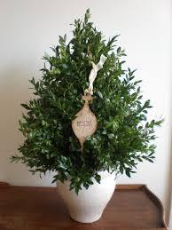 Baltimore County Christmas Tree Pickup 2015 by Christmas Tree Archives Behnke Nurseries Garden Center