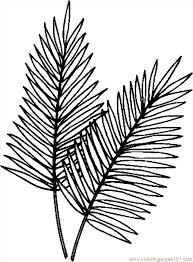Palm Leaves Coloring Page