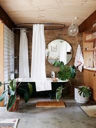 Best Plants For Bathroom No Light by Bathroom Design Wonderful Small Bathroom Plants Best Lighting