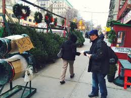 Christmas Tree Shop Salem Nh by Christmas Tree Shop Syracuse Ny Home Design Inspirations
