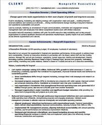 Sample Non Profit Executive Director Resume