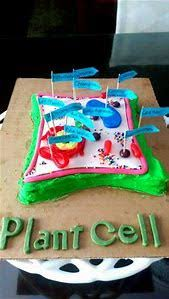 Edible Plant Cell Cake Projects