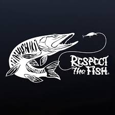 Muskie Decal | Respect The Fish 2 Fish Skeleton Decals Car Sticker Fishing Boat Canoe Kayak Rodfather Funny Vancar Jdm Vw Dub Vag Euro Vinyl Decal Tancredy Go Stickers And Bumper Bass Truck Wall Window 1pc High Quality 15179cm Id Rather Be Fly Angler Vinyl Decal Fly Fishing Sticker Ice Hell When Freezes Over Ill Visit To Buy 14684cm Is Good Bruce Pinterest 2018 Styling Daiwa Brand And For Hooked On Outdoor Life Camping