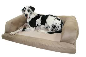 GRAND COUCH DOG BED