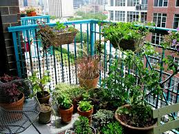 Ideas For Small Balcony Gardens Planted With Vegetable Crops Also Flowers In The Wicker Pots And Clay