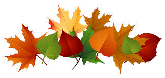 Autumn Leaves Pile Clip Art Fall Leaves Picture