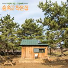 100 House In Forest Little The EP02 KVARIETY BGMS