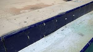 swimming pool tile replacement mastermind handyman