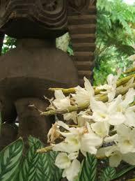 e small part of the gardens Picture of Nani Mau Gardens Hilo