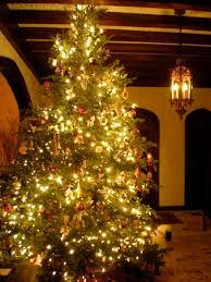 Shells Christmas Tree Farm Tuscumbia Al by 464 Best Alabama The Beautiful Images On Pinterest Alabama