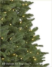 In Most Cases Having More Branch Tips Is Preferred Because An Abundance Of Needles Creates A Full Look For The Tree However If Christmas
