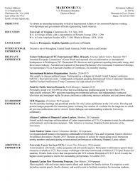 Government Jobs Resume Format Elegant Samples Myacereporter