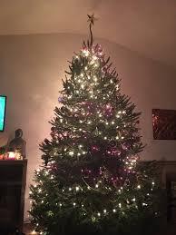 Anne Ellen Christmas Tree Farm