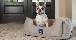 Serta Dog Bed by Sam U0027s Club Serta Perfect Sleeper Orthopedic Pet Bed Only 29 84