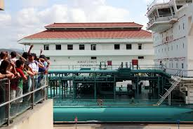 Finding Freedom Visiting the Panama Canal from Panama City 7 25
