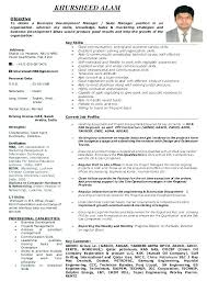 Corporate Resume Examples Business Development Manager Sample Developer Oracle Example